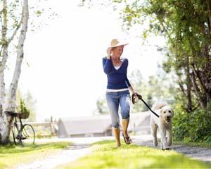 walking-your-dog