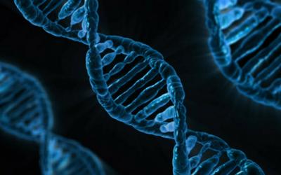 genetic_tests