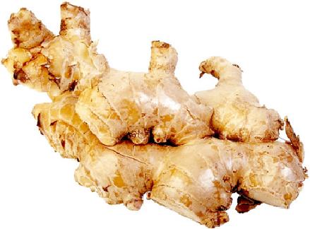 ginger-1