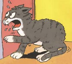 gatos-que-araan-objetos
