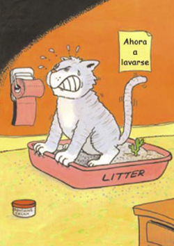 la-bandeja-sanitaria-para-gatos