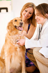 preventive-health-care1