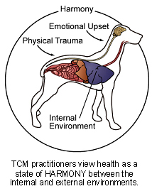 veterinary_tcm-2