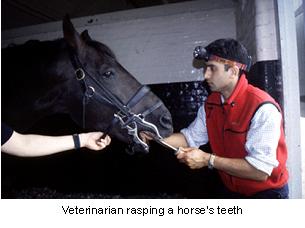 dentistry-2
