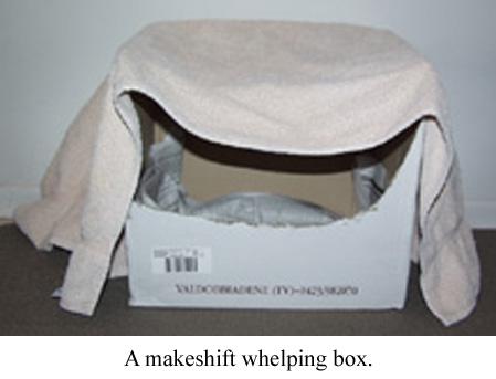 a makeshift whelping box