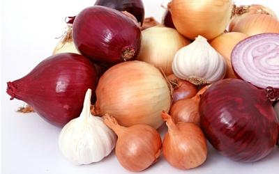 onion_garlic_toxcicity
