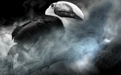 second_hand_smoke