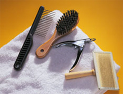 grooming_and_coat_care_for_your_dog1