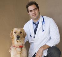 veterinary_visits_examinations_-_desensitization_reducing_fear_1