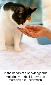 veterinary_herbal_therapy-3