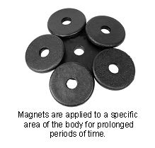 veterinary_magnetic_therapy-1