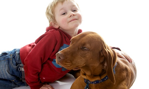dog_behavior_problems_aggression_children