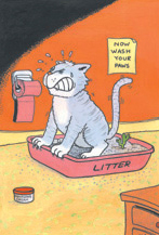 constipation_in_cats-2