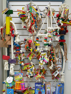 toys_for_birds-1